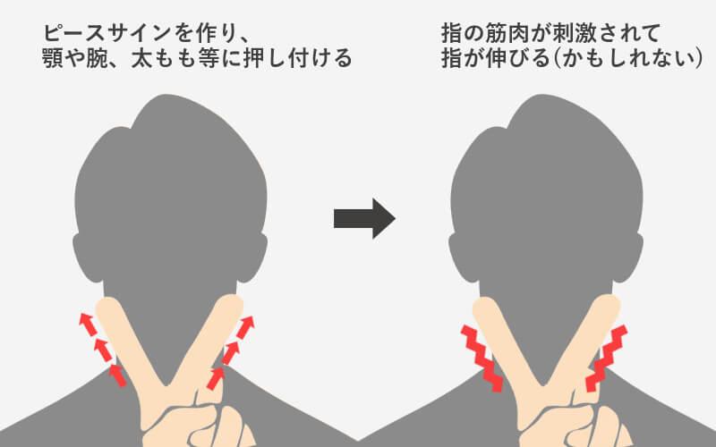 指を伸ばす方法図解2